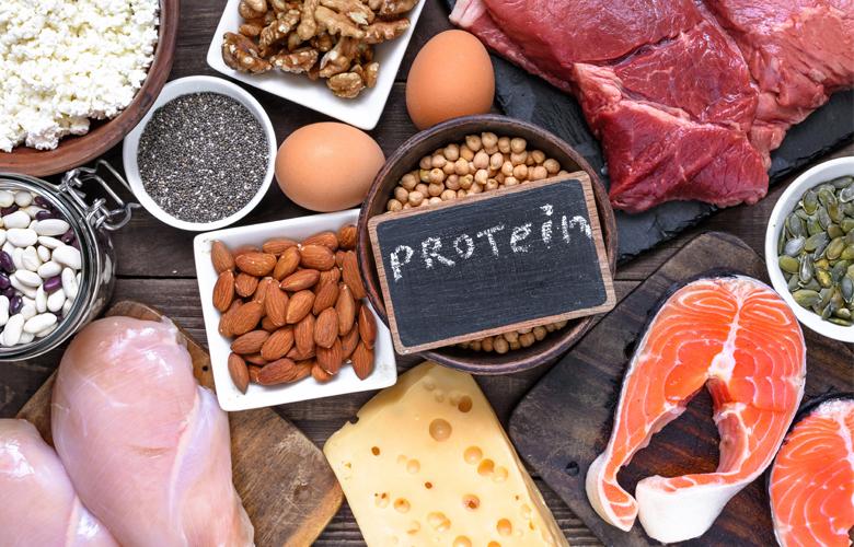 Белковое питание диета