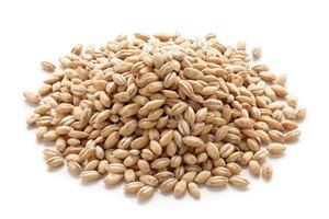 Антицеллюлитная диета: список разрешенных и запрещенных продуктов питания